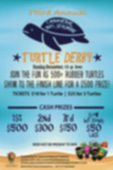 Turtle Derby modified 2017 for 2019.jpg