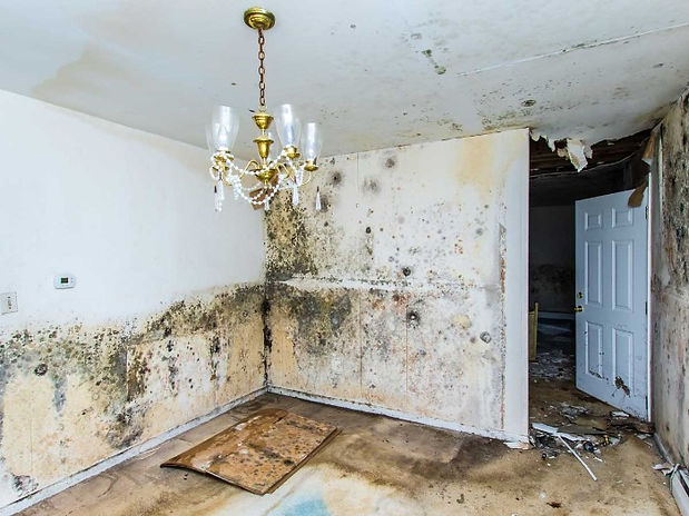 water damage restoration in Vancouver