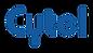 Cytel-Logo-png-format-300x171.png
