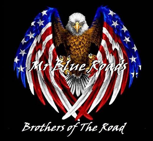 bald-eagle-videos-youtube-1.jpg