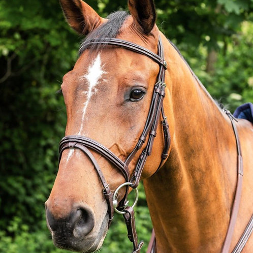 E91 Prestige bridle with patent leather detail and rubber reins