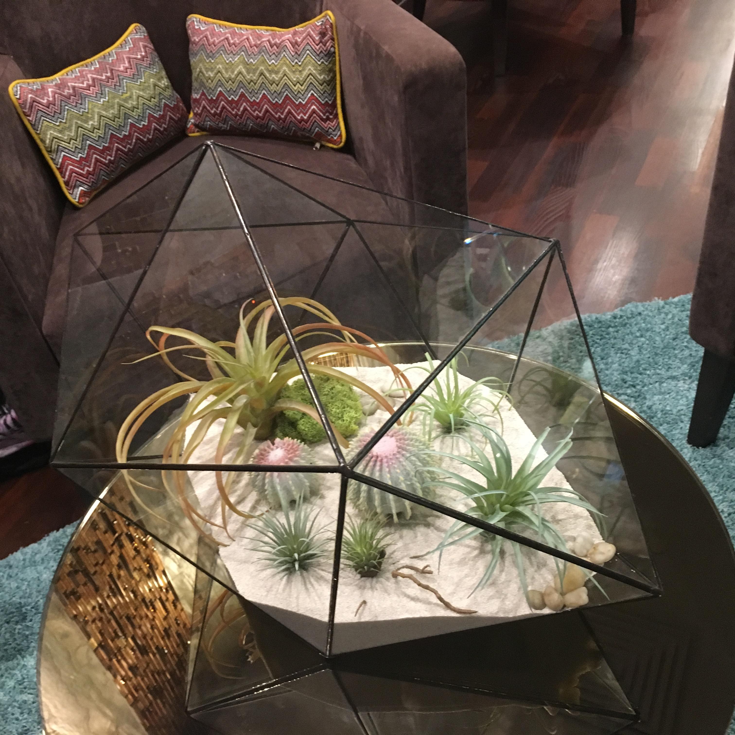 real touch тилландсия флорариум
