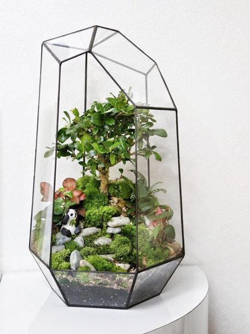 флорариум спб, терриариум с растениями, геометрический флорариум, бонсай, панда под деревом