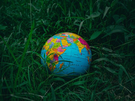 Ecopreneurship: An Introduction to Starting a Business That Saves the Planet