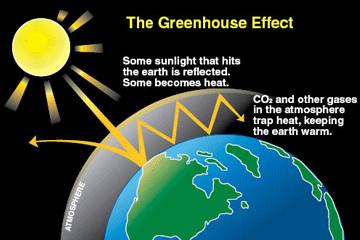 compost, eco alphabet, sustainable lifestyle, eco friendly, zero waste, plastic free, waste free, ecoprenuer, greenhouse gas