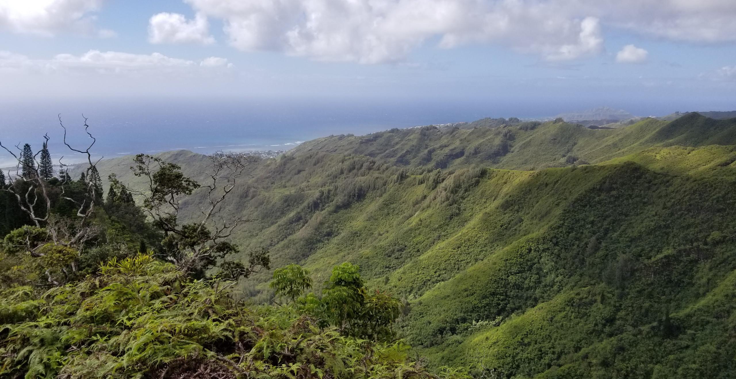 Kuli'ou'ou Ridge Trail, Hawaii Hiking, hawaii ridges, mountain hawaii, oahu hikes, oahu, hiking, tropical hiking, tropical islands