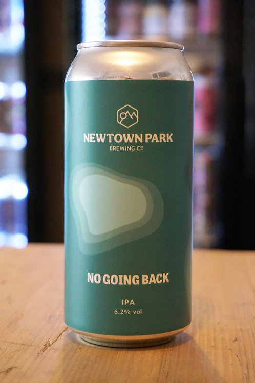 NEWTOWN PARK - NO GOING BACK