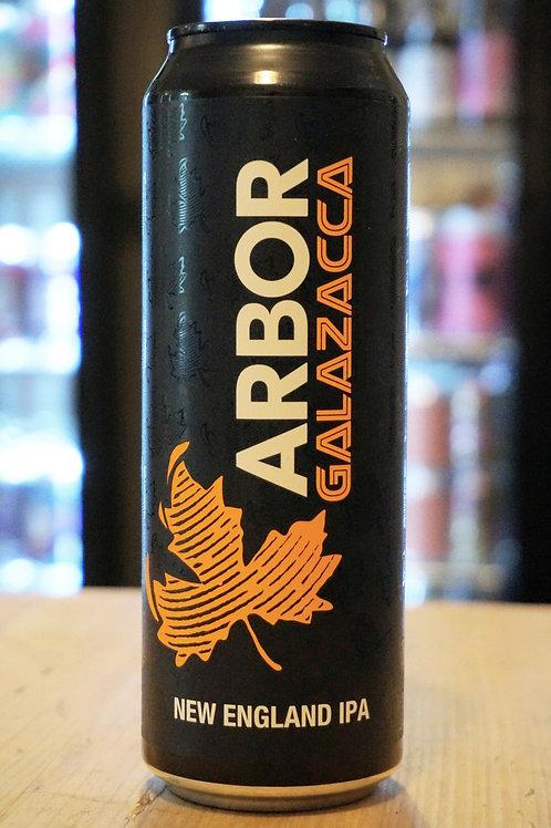 ARBOR - GALAZACCA