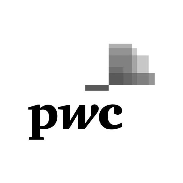 Gray Logo_0019_PwC.jpg