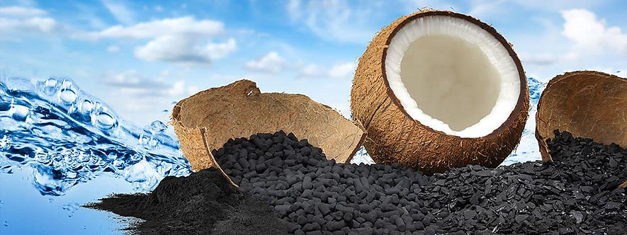 carbon from coconut shell.jpg