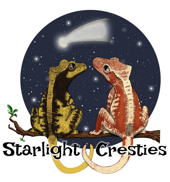 Starlight Cresties - Main Logo - Transpa