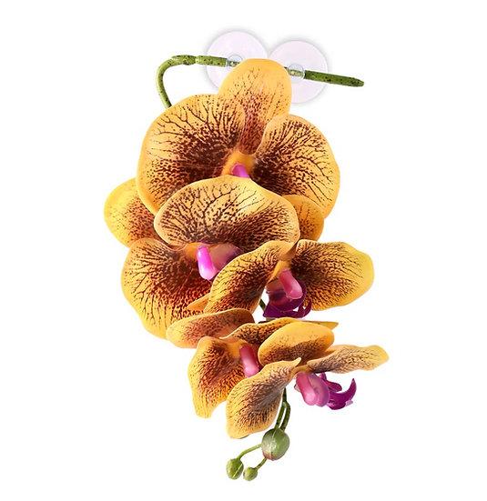 Pangea Hengende Orkidè - Gul