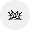 Icon 4.png