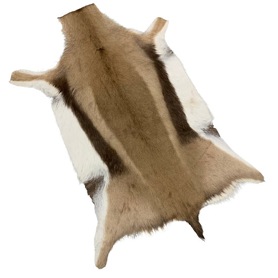 Thompsons Gazelle Hide Rug