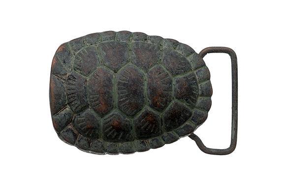 3D Belt Buckle   Turtle Shell Design