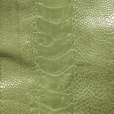 Ostrich Leg Leather   Linden Green   Glazed Finish