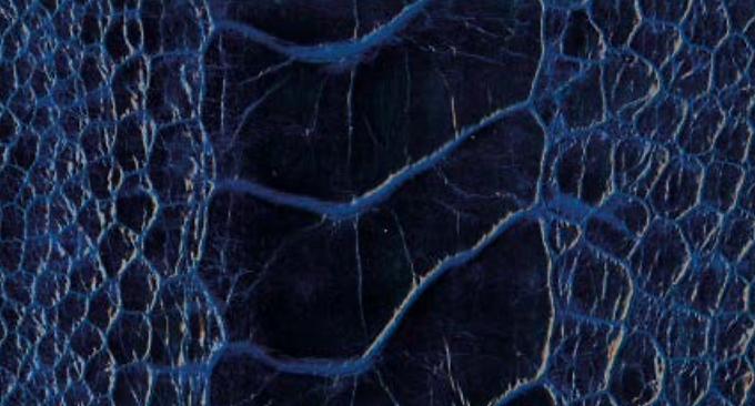 Ostrich Leg Leather   Hydrangea Blue   Glazed Finish