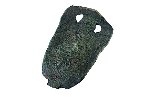 Stingray Leather | Green Rainbow | Hologram Polished Finish