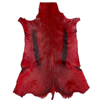 Springbok Hide Rugs   Red