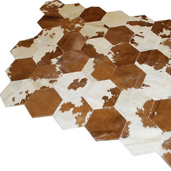 Brown and White Hexagons.jpeg