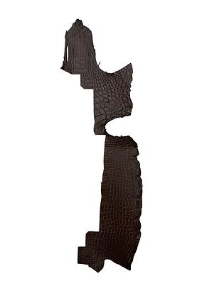 Alligator Flank   Dark Brown