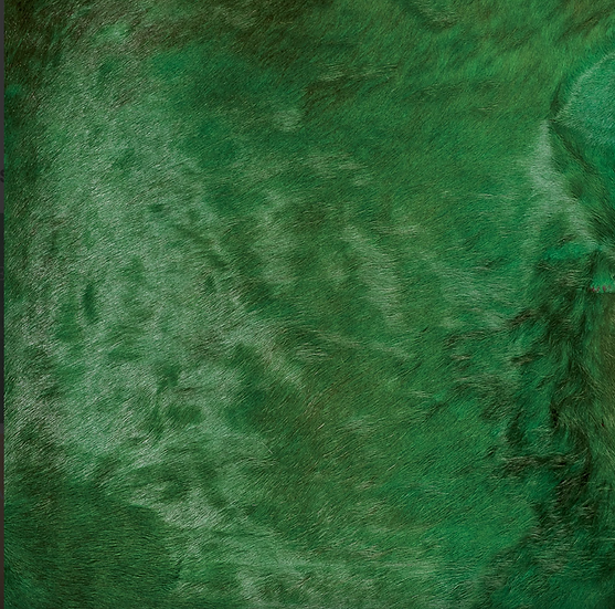 Italian Dyed Cowhide Rug | Contrast | Green / Red