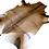 Thumbnail: Red Hartebeest Hide Rug