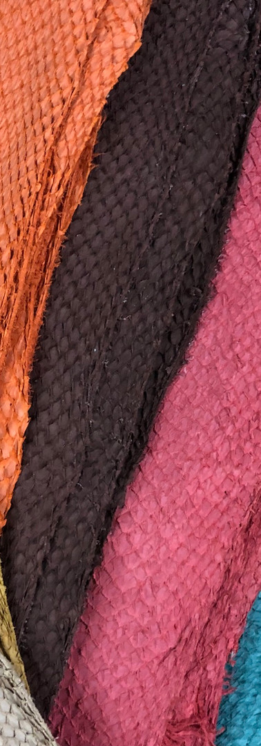 Salmon Leather