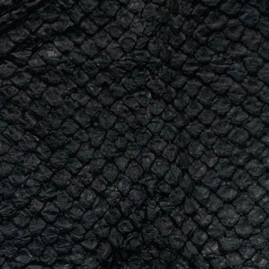 Arapaima Leather | Black Semi Shiny