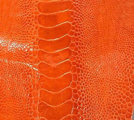 Ostrich Leg Leather   Mandarin Orange   Glazed Finish