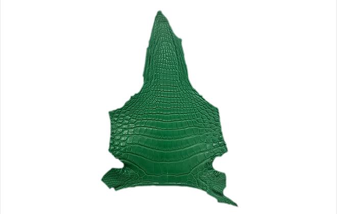 Crocodile Chin   Matte Green