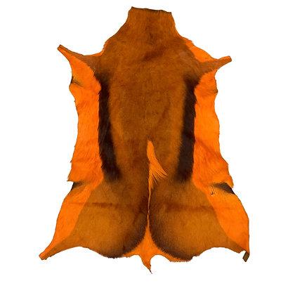 Springbok Hide | Orange