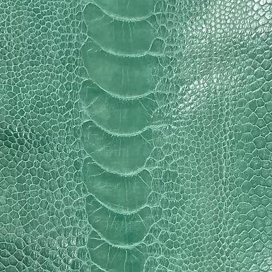 Ostrich Leg Leather | Turquoise | Glazed Finish