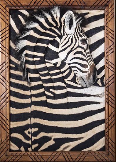 Genuine Zebra Hide Wall Portrait