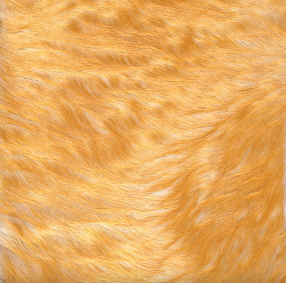 Italian Dyed Cowhide Rug | Contrast | White / Lemon
