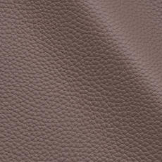 Taupe 1504
