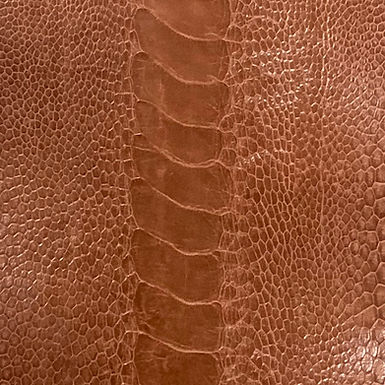 Ostrich Leg Leather | Cognac | Glazed Finish