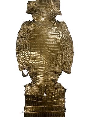 Nile Crocodile Belly Skin | Vintage Gold | 34cm