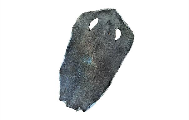 Stingray Leather | Silver | Hologram Polished Finish