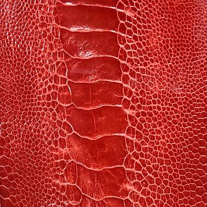 Ostrich Leg Leather   Red   Glazed Finish
