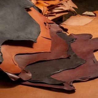 Chahin Bridle Leather