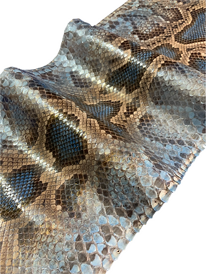 Python | Blue | Ivy Pearl