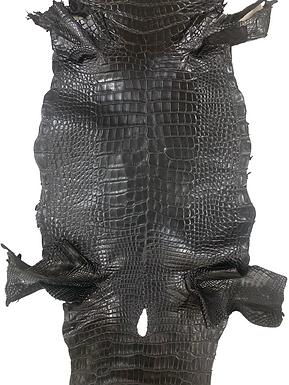 Alligator Belly Skin   Black   20-24cm