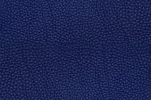 Taurillon Lagun | Electric Blue | Remy Carriat