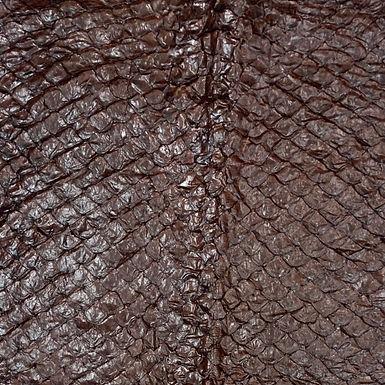 Arapaima Leather | Chestnut Shiny