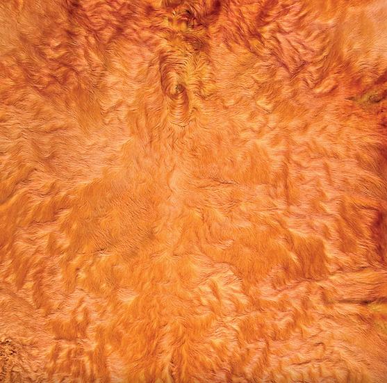 Italian Dyed Cowhide Rug | Contrast | Yellow / Fuchsia