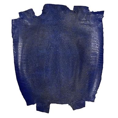 Lizard | Blue | Front Cut