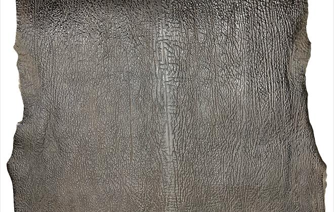 Shark Leather   Dark Brown