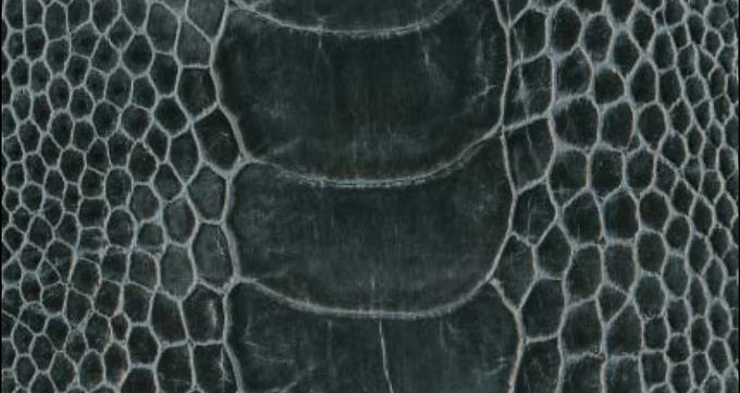 Ostrich Leg Leather | Dark Grey | Glazed Finish