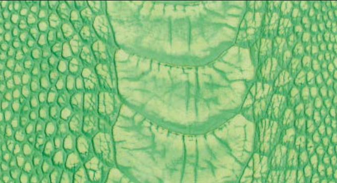 Ostrich Leg Leather   Stonewash   Lime Green